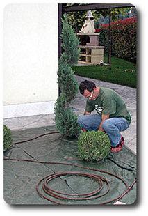 Realizzare giardini con azienda Oliverde di Nogara